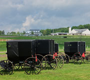 Amish Country Working Farm