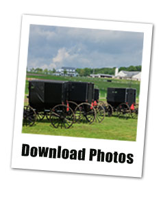 Amish Country Working Farm in Ohio